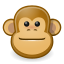 Face, Gnome, Monkey Icon