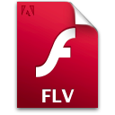 Document, File, Flv Icon
