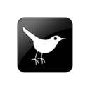 Bird, Square, Twitter Icon