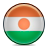Flag, Niger Icon