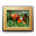 Pictures, Toolbar Icon