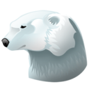 Animal, Bear, Polar Icon