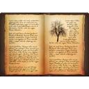 Book, Experiences Icon