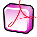Acrobat, Adobe, Professional Icon