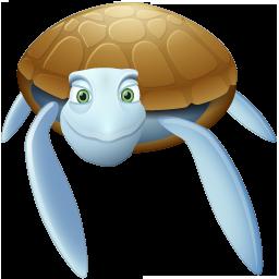 Animal, Turtle Icon