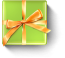 Birthday, Christmas, Gift Icon