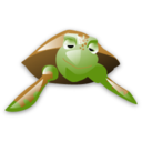 Animal, Turtle Icon