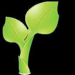 Garden, Green, Leaf, Nature, Organic, Plant Icon