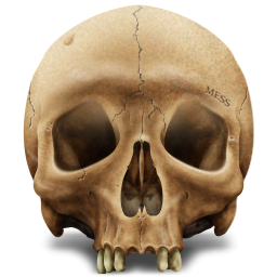 Death, Kill, Skull Icon