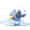Animal, Bird, Pool, Tweet, Twitter, Water Icon