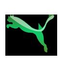 Green, Puma Icon