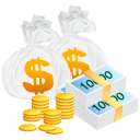 Bag, Money Icon