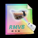 Files, Rmvb Icon