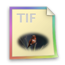 Files, Tif Icon