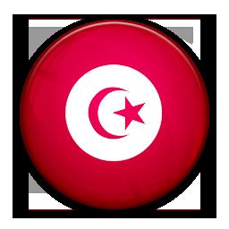 Flag, Of, Tunisia Icon