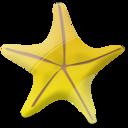 Marine, Star Icon