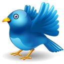 Away, Fly, Twitter Icon