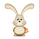 Bunny, Easter, Rss Icon