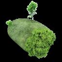 Island, Stone Icon