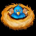 Nest, Twitter Icon