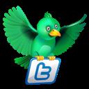 Green, News, Twitter Icon