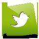 Green, Icon, Twitter Icon