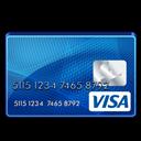 Standard, Visa Icon