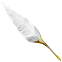 Old, Plume, School Icon