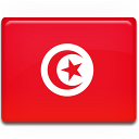 Flag, Tounis, Tunisia, Tunisie Icon