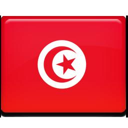 Flag, Tounis, Tunisia, Tunisie Icon