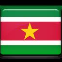 Flag, Suriname Icon