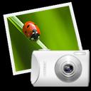 f, Spot Icon