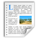 New, Text Icon