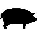 Animal, Pig Icon
