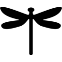 Animal, Insect Icon