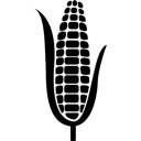 Korn, Plant Icon