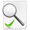 Check, File, Search Icon
