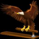 Animal, Bird, Eagle, Thunderbird Icon