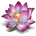 Flower, Lotus, Oriental, Pink Icon