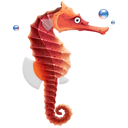 Animal, Fish, Seahorse Icon