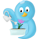 Bird, Flower, Spring, Twitter Icon