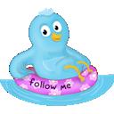 Bird, Pool, Summer, Twitter Icon