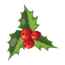 Christmas, Icon, Mistletoe Icon