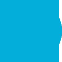 Vodafone Icon