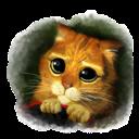Icon, Puss Icon