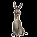 Donkey, Icon Icon
