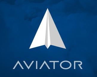 paper,plane logo