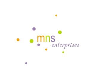 MNS Enterprises logo