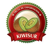 Kiwisur