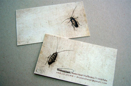 Bug Killer Card business card